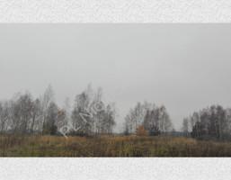 Morizon WP ogłoszenia | Działka na sprzedaż, Rusiec, 1000 m² | 7454