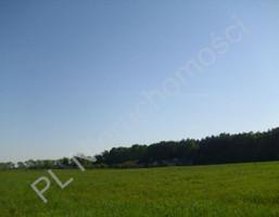 Morizon WP ogłoszenia | Działka na sprzedaż, Szamoty, 1648 m² | 1104