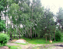 Morizon WP ogłoszenia   Działka na sprzedaż, Domaniew, 1326 m²   8818