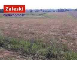 Morizon WP ogłoszenia   Działka na sprzedaż, Szarłata Sianowska, 10000 m²   7758