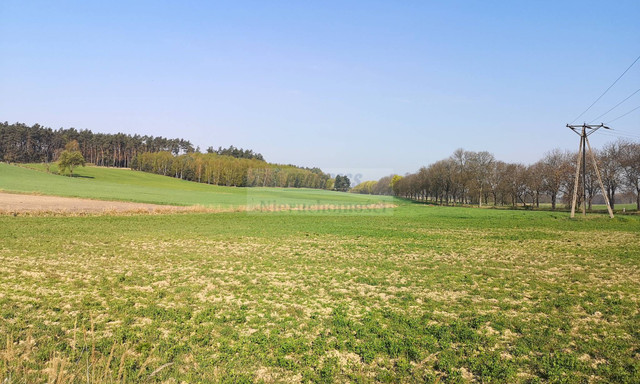 Działka na sprzedaż <span>Wschowski (Pow.), Wschowa (Gm.), Hetmanice</span>