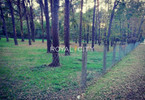 Morizon WP ogłoszenia | Działka na sprzedaż, Konstancin-Jeziorna, 6182 m² | 8106
