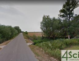 Morizon WP ogłoszenia | Działka na sprzedaż, Łępice, 6350 m² | 5035