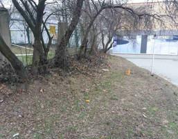 Morizon WP ogłoszenia | Działka na sprzedaż, Poznań Naramowickiej, 43 m² | 9940