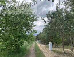 Morizon WP ogłoszenia | Działka na sprzedaż, Ludwikowo, 1000 m² | 7104