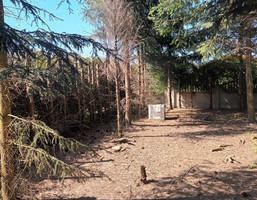 Morizon WP ogłoszenia | Działka na sprzedaż, Jerzykowo Okrężna, 1500 m² | 1867