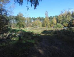 Morizon WP ogłoszenia | Działka na sprzedaż, Jerzykowo Sosnowa, 9500 m² | 4179