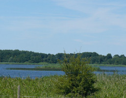 Morizon WP ogłoszenia   Działka na sprzedaż, Połchowo, 21900 m²   6404