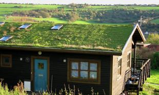 Zielone dachy – przyszłość eko-architektury