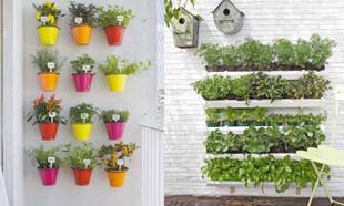 Ogród na balkonie – to prostsze niż myślisz!