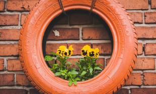 Niedrogie sposoby DIY na zagospodarowanie ogrodu