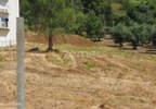 Działka na sprzedaż, Portugalia Alburitel, 5000 m²   Morizon.pl   0869 nr15