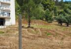 Działka na sprzedaż, Portugalia Alburitel, 5000 m²   Morizon.pl   0869 nr16