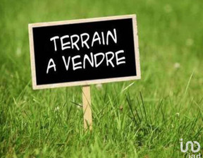 Działka na sprzedaż, Francja Blain, 11652 m²