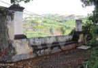 Działka na sprzedaż, Portugalia Câmara De Lobos, 12445 m² | Morizon.pl | 3113 nr16