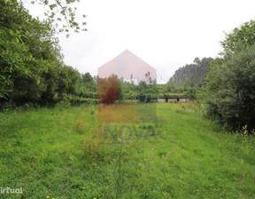 Działka na sprzedaż, Portugalia Pico, 3000 m²