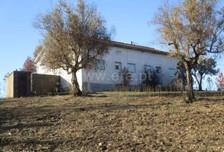 Działka na sprzedaż, Portugalia Proença-A-Nova E Peral, 9893 m²
