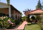 Działka na sprzedaż, Portugalia Ladoeiro, 30450 m² | Morizon.pl | 4735 nr8
