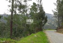 Działka na sprzedaż, Portugalia Ancede E Ribadouro, 4800 m²