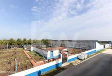 Działka na sprzedaż, Portugalia Casével E Vaqueiros, 16200 m²